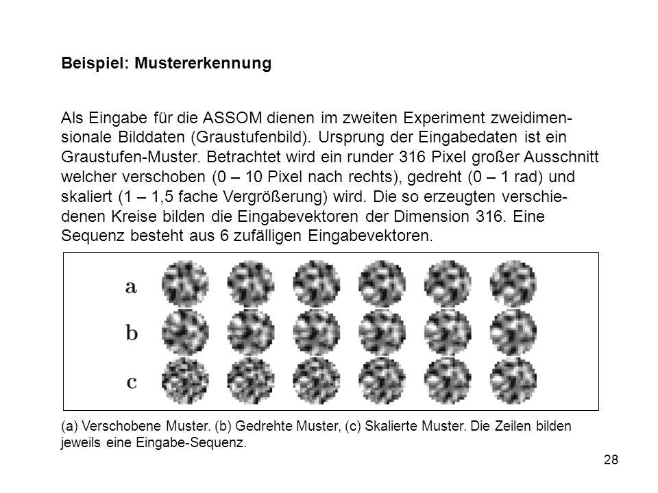 28 Beispiel: Mustererkennung Als Eingabe für die ASSOM dienen im zweiten Experiment zweidimen- sionale Bilddaten (Graustufenbild).