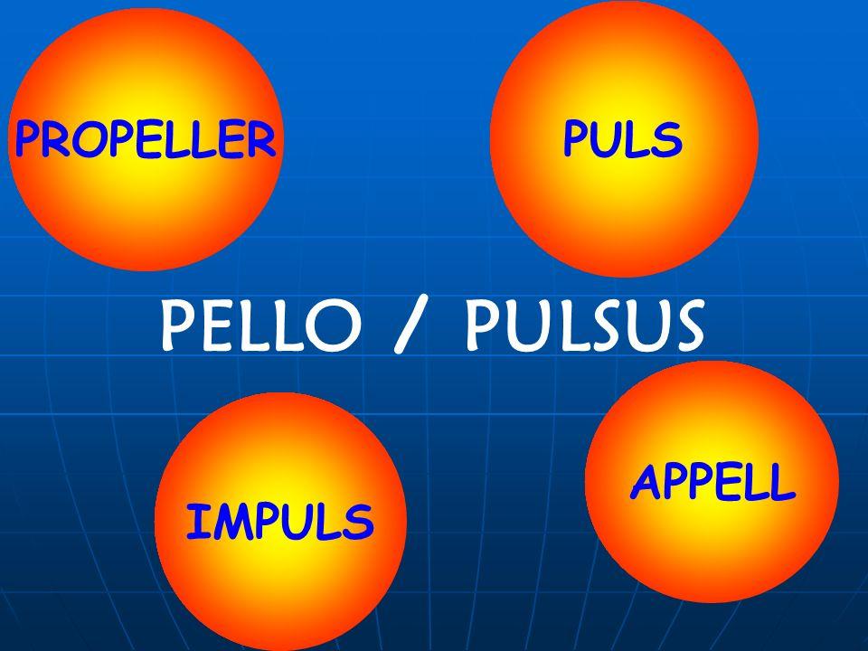 PELLO / PULSUS PROPELLER PULS IMPULS APPELL