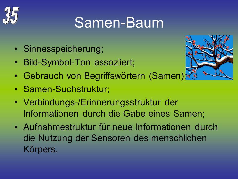 Samen-Baum Sinnesspeicherung; Bild-Symbol-Ton assoziiert; Gebrauch von Begriffswörtern (Samen); Samen-Suchstruktur; Verbindungs-/Erinnerungsstruktur d