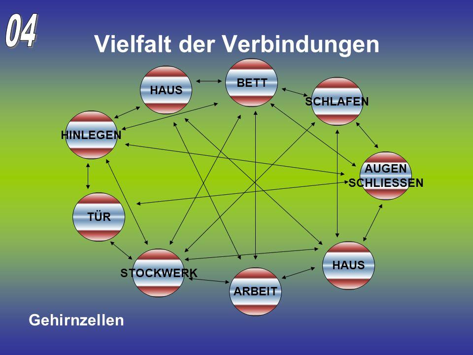 Vielfalt der Verbindungen TÜR BETT ARBEIT HAUS STOCKWERK HINLEGEN AUGEN SCHLIESSEN SCHLAFEN HAUS Gehirnzellen