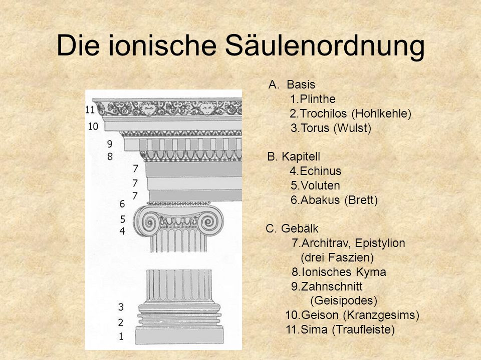 Ionische Säulen des Portikus Archaisch, um 550 v. Chr. Kleinasiatisch-ionische Base mit Plinthe, Spira mit Doppel-Trochilus