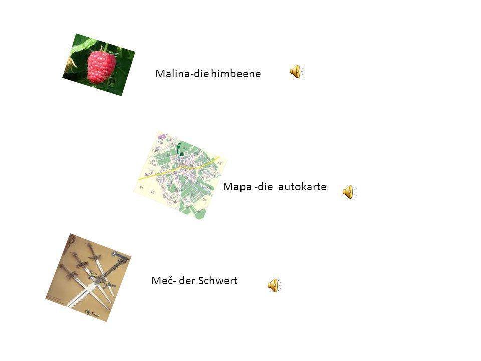 Motýľ Mravec Der Schmetterling Die Ameise