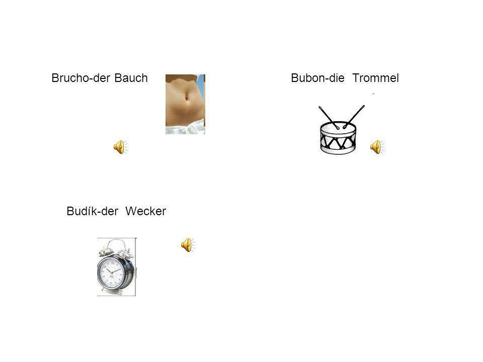 Brucho-der BauchBubon-die Trommel Budík-der Wecker