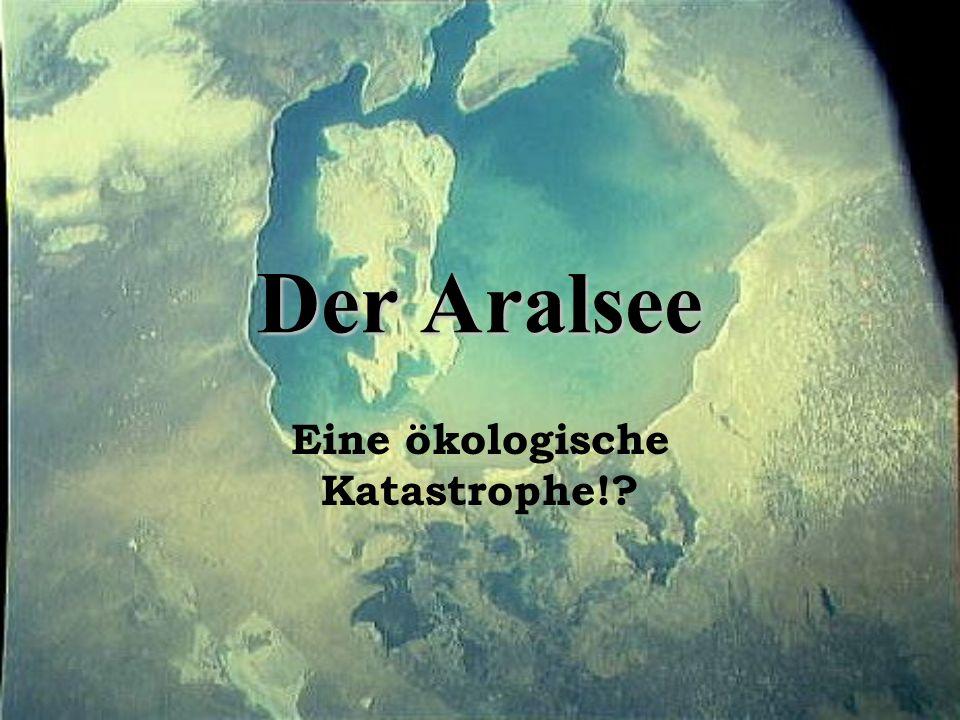 2.2 Veränderungen im Ökosystem Aralsee -Wasserfläche von 69500 km 2 auf 26000- 28000 km 2 geschrumpft (1960-2003) um 40000- 42000 km 2 verkleinert -Verkleinerung von 1000 km jährlich -damals viertgrößter Binnensee, heute nur noch der achtgrößte See -1987 Zerfall des Aralsees in zwei Seen (Großer und Kleiner See) -Austrocknungsgebiet zuerst nur im Osten und Südosten -erst nach 1976 schrumpft der gesamte Uferumfang Ostuferlinie wich ab 1957 gut 130 km zurück -durch Verbrauch für LW reduzierte sich die Zuflussmenge zum Aralsee von 62 km 3 /Jahr (1945) auf 4 km 3 /Jahr (1980) -Meeresspiegel sank um 14 m, pro Jahr ein weiterer Meter -Versalzung des Aralseegebiets liegt das 211fache über zugelassener Norm