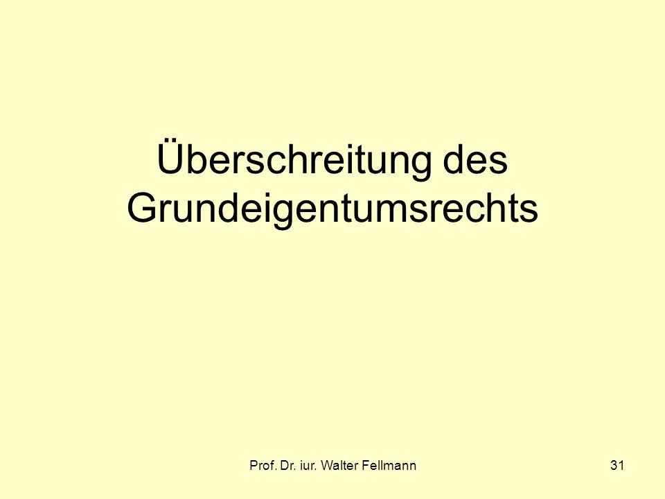 Prof. Dr. iur. Walter Fellmann31 Überschreitung des Grundeigentumsrechts