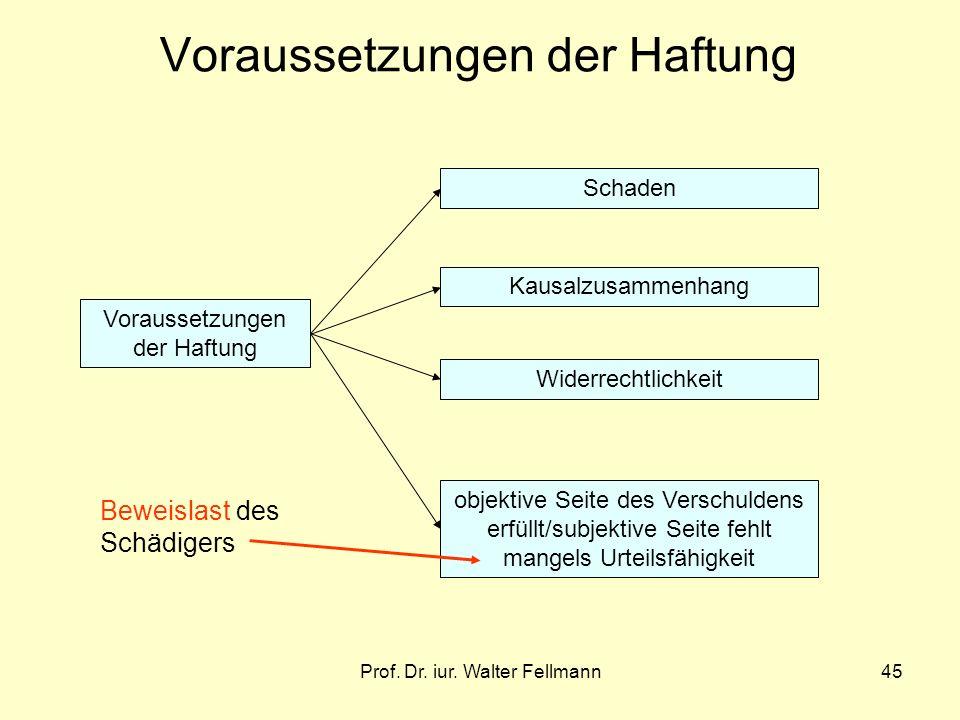 Prof. Dr. iur. Walter Fellmann45 Voraussetzungen der Haftung Schaden Kausalzusammenhang Widerrechtlichkeit objektive Seite des Verschuldens erfüllt/su