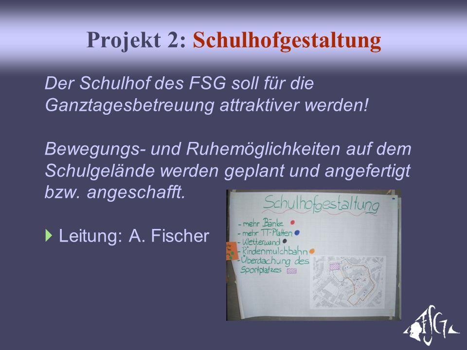 Projekt 2: Schulhofgestaltung Der Schulhof des FSG soll für die Ganztagesbetreuung attraktiver werden! Bewegungs- und Ruhemöglichkeiten auf dem Schulg