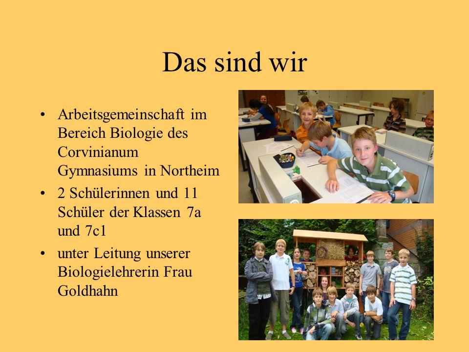 Das sind wir Arbeitsgemeinschaft im Bereich Biologie des Corvinianum Gymnasiums in Northeim 2 Schülerinnen und 11 Schüler der Klassen 7a und 7c1 unter Leitung unserer Biologielehrerin Frau Goldhahn