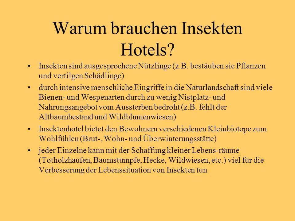 Warum brauchen Insekten Hotels.Insekten sind ausgesprochene Nützlinge (z.B.