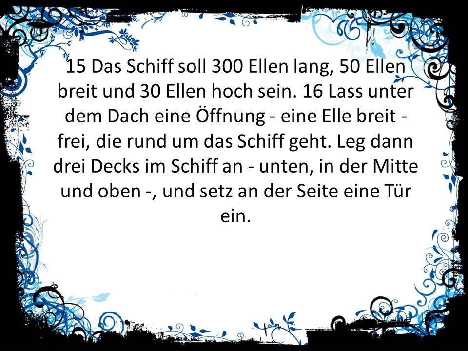 15 Das Schiff soll 300 Ellen lang, 50 Ellen breit und 30 Ellen hoch sein. 16 Lass unter dem Dach eine Öffnung - eine Elle breit - frei, die rund um da