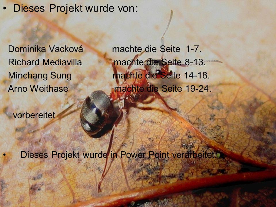 Dieses Projekt wurde von: Dominika Vacková machte die Seite 1-7.
