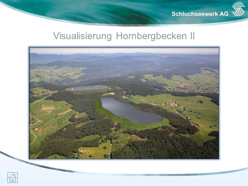 Visualisierung Hornbergbecken II