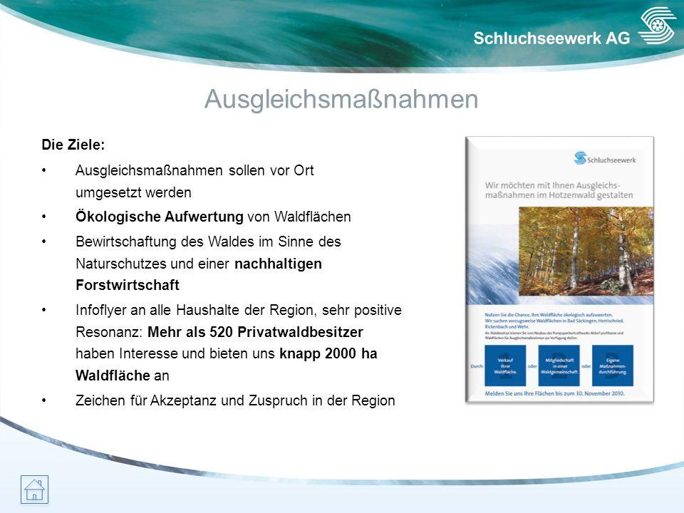 Ausgleichsmaßnahmen Die Ziele: Ausgleichsmaßnahmen sollen vor Ort umgesetzt werden Ökologische Aufwertung von Waldflächen Bewirtschaftung des Waldes i