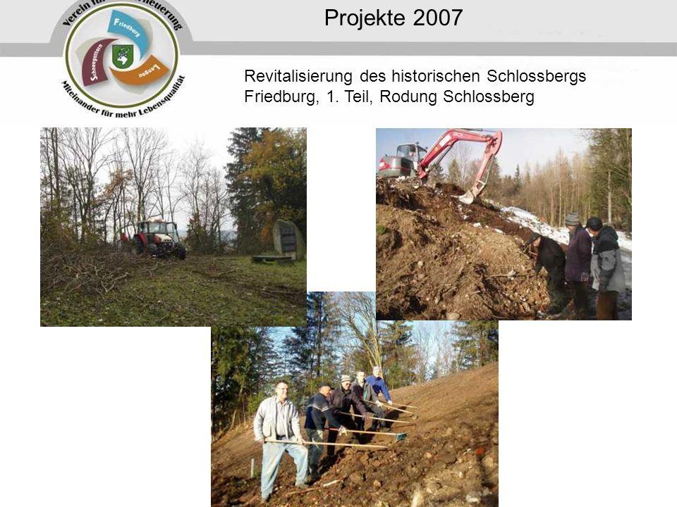 Projekte 2007 Revitalisierung des historischen Schlossbergs Friedburg, 1. Teil, Rodung Schlossberg