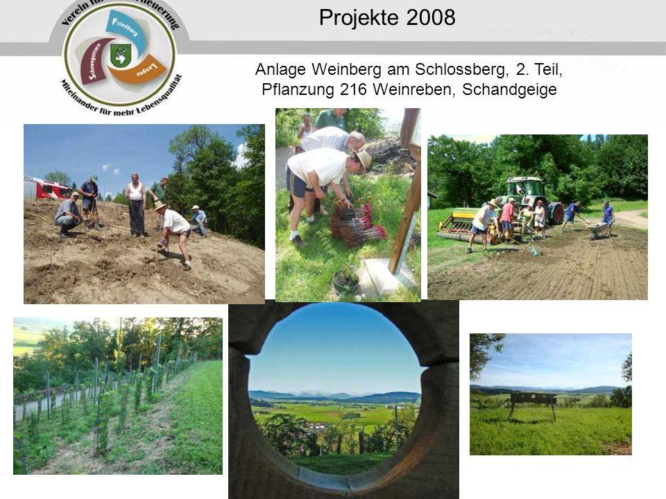 Projekte 2008 Anlage Weinberg am Schlossberg, 2. Teil, Pflanzung 216 Weinreben, Schandgeige