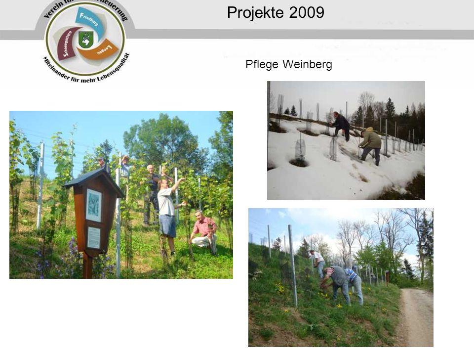 Projekte 2009 Pflege Weinberg