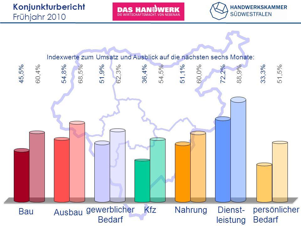Konjunkturbericht Frühjahr 2010 45,5% Bau Ausbau gewerblicher Bedarf KfzNahrungDienst- leistung persönlicher Bedarf Indexwerte zum Umsatz und Ausblick