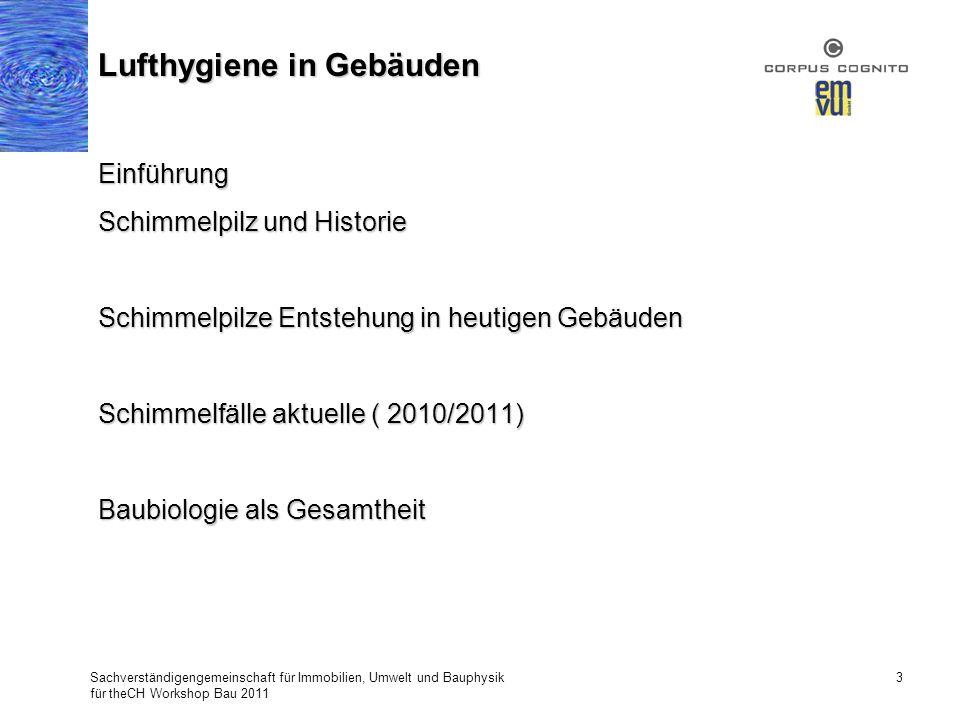 Sachverständigengemeinschaft für Immobilien, Umwelt und Bauphysik für theCH Workshop Bau 2011 3 Lufthygiene in Gebäuden Einführung Schimmelpilz und Hi