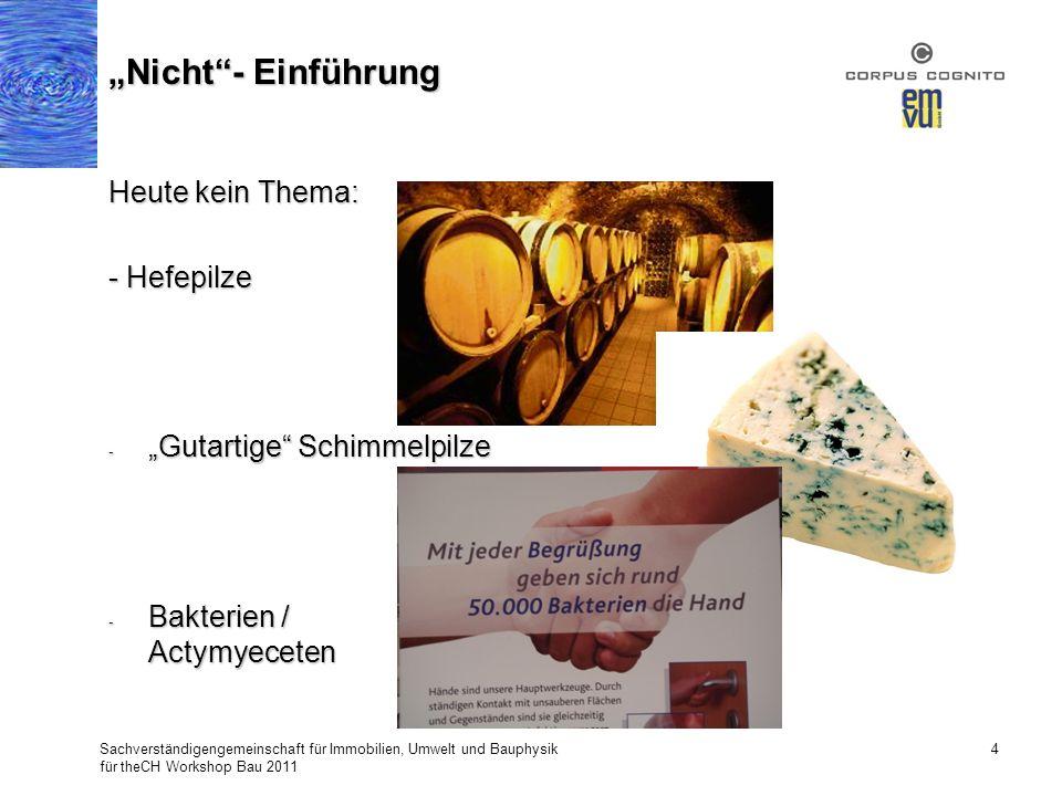 Heute kein Thema: - Hefepilze - Gutartige Schimmelpilze - Bakterien / Actymyeceten Sachverständigengemeinschaft für Immobilien, Umwelt und Bauphysik f