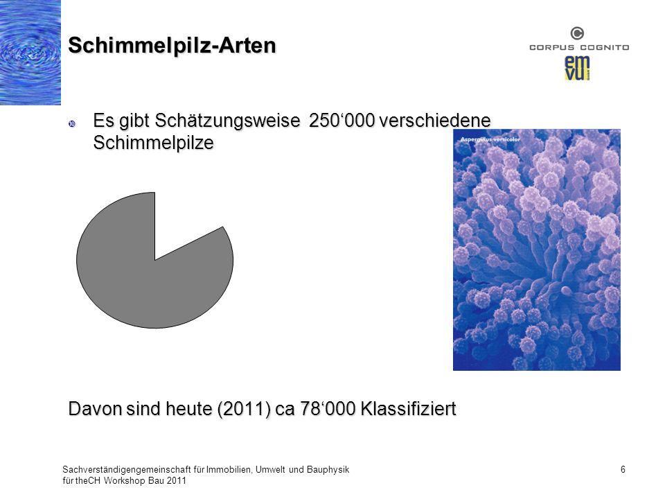 Es gibt Schätzungsweise 250000 verschiedene Schimmelpilze Es gibt Schätzungsweise 250000 verschiedene Schimmelpilze Davon sind heute (2011) ca 78000 K