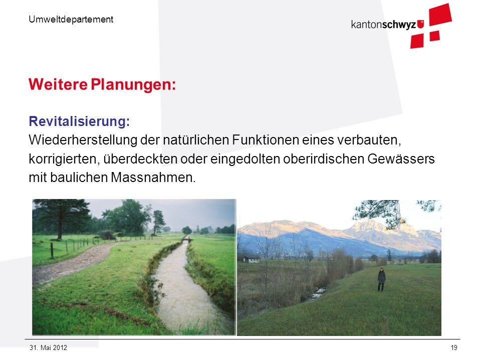 Umweltdepartement 31. Mai 201219 Weitere Planungen: Revitalisierung: Wiederherstellung der natürlichen Funktionen eines verbauten, korrigierten, überd