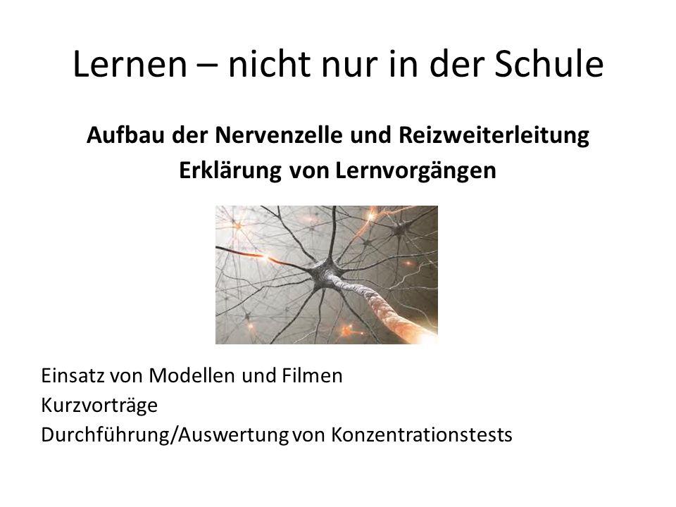 Lernen – nicht nur in der Schule Aufbau der Nervenzelle und Reizweiterleitung Erklärung von Lernvorgängen Einsatz von Modellen und Filmen Kurzvorträge Durchführung/Auswertung von Konzentrationstests