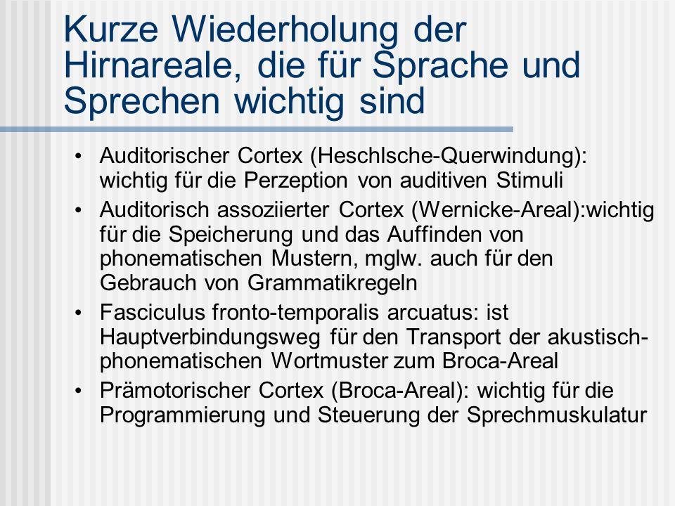 Kurze Wiederholung der Hirnareale, die für Sprache und Sprechen wichtig sind Auditorischer Cortex (Heschlsche-Querwindung): wichtig für die Perzeption