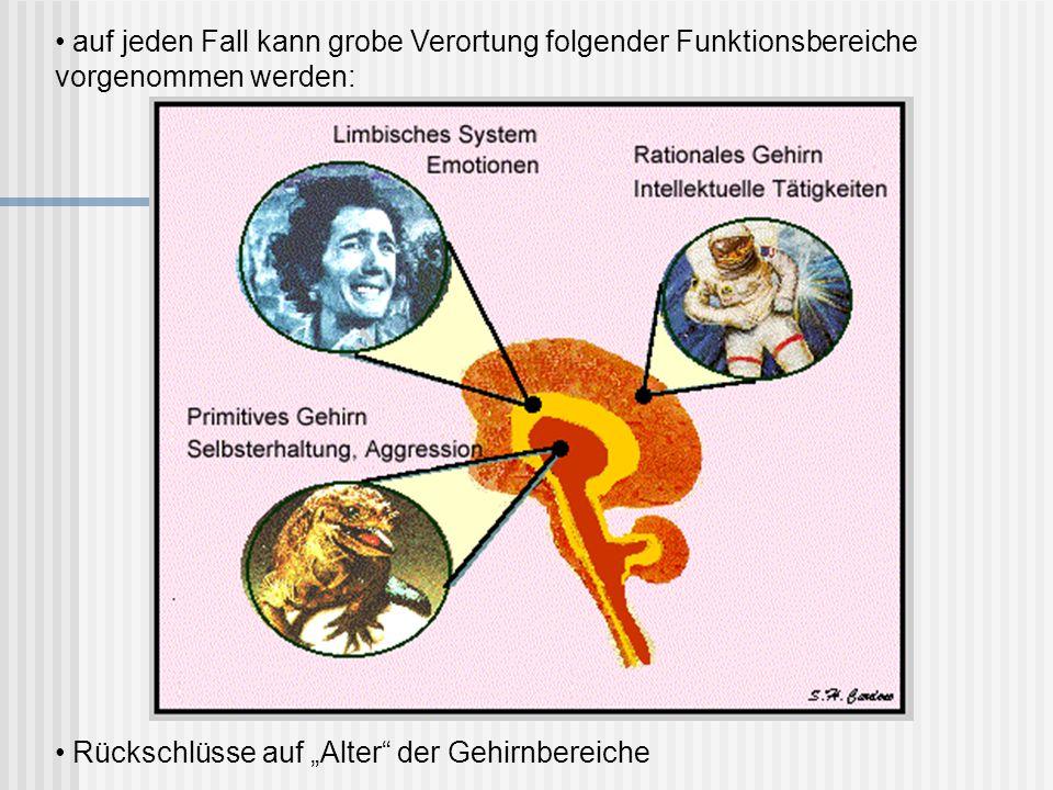 auf jeden Fall kann grobe Verortung folgender Funktionsbereiche vorgenommen werden: Rückschlüsse auf Alter der Gehirnbereiche