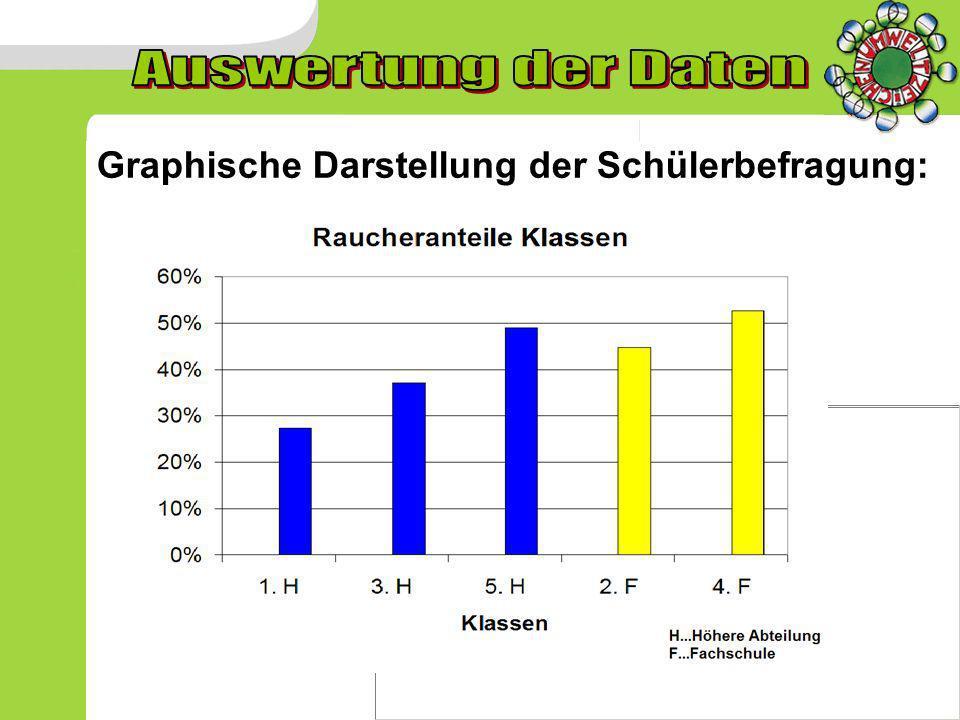 Graphische Darstellung der Schülerbefragung:
