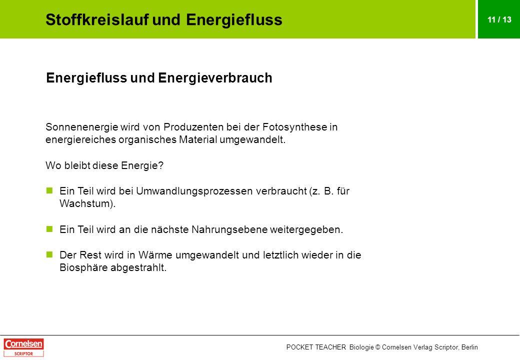 POCKET TEACHER Biologie © Cornelsen Verlag Scriptor, Berlin 11 / 13 Energiefluss und Energieverbrauch Sonnenenergie wird von Produzenten bei der Fotos