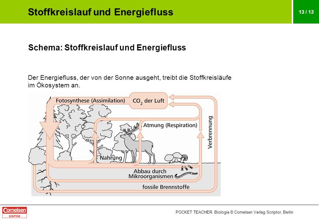 POCKET TEACHER Biologie © Cornelsen Verlag Scriptor, Berlin 13 / 13 Schema: Stoffkreislauf und Energiefluss Der Energiefluss, der von der Sonne ausgeh