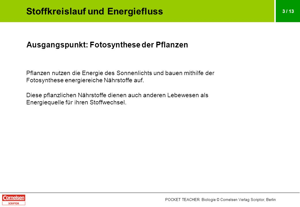 POCKET TEACHER Biologie © Cornelsen Verlag Scriptor, Berlin 3 / 13 Ausgangspunkt: Fotosynthese der Pflanzen Pflanzen nutzen die Energie des Sonnenlich