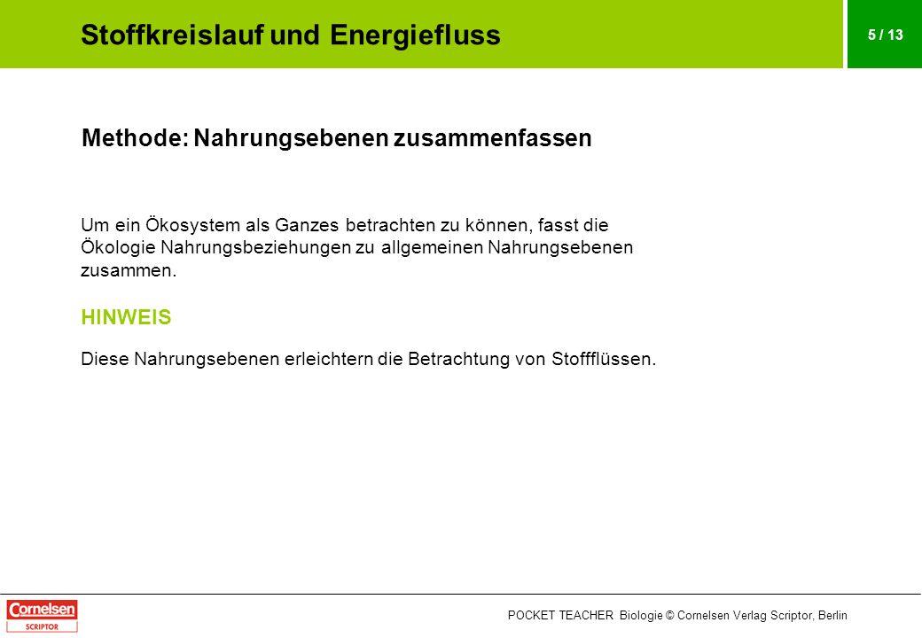 POCKET TEACHER Biologie © Cornelsen Verlag Scriptor, Berlin 5 / 13 Methode: Nahrungsebenen zusammenfassen Um ein Ökosystem als Ganzes betrachten zu kö