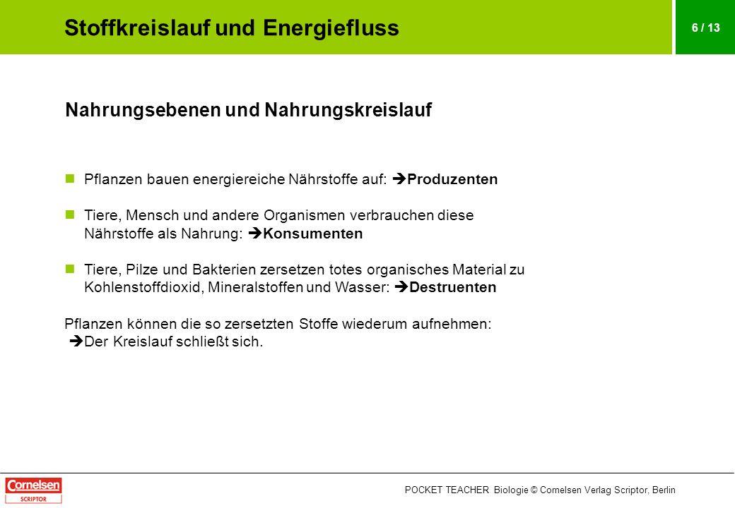 POCKET TEACHER Biologie © Cornelsen Verlag Scriptor, Berlin 6 / 13 Nahrungsebenen und Nahrungskreislauf Pflanzen bauen energiereiche Nährstoffe auf: P