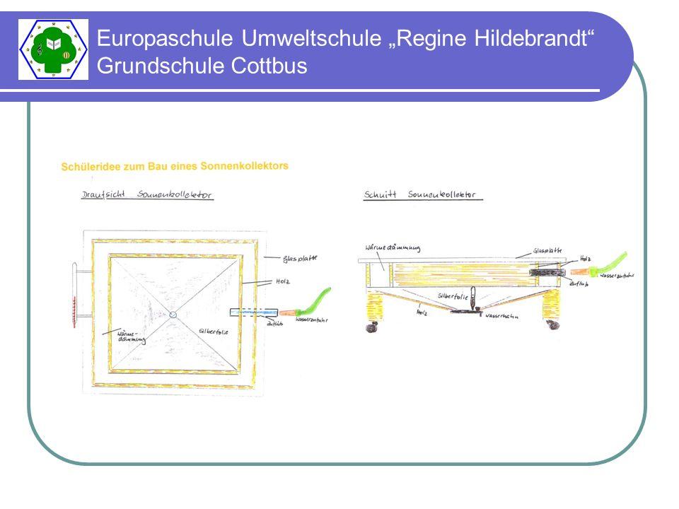 Europaschule Umweltschule Regine Hildebrandt Grundschule Cottbus