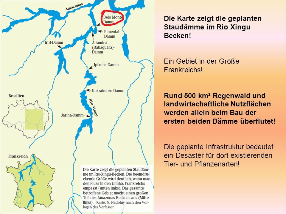 Die Karte zeigt die geplanten Staudämme im Rio Xingu Becken.