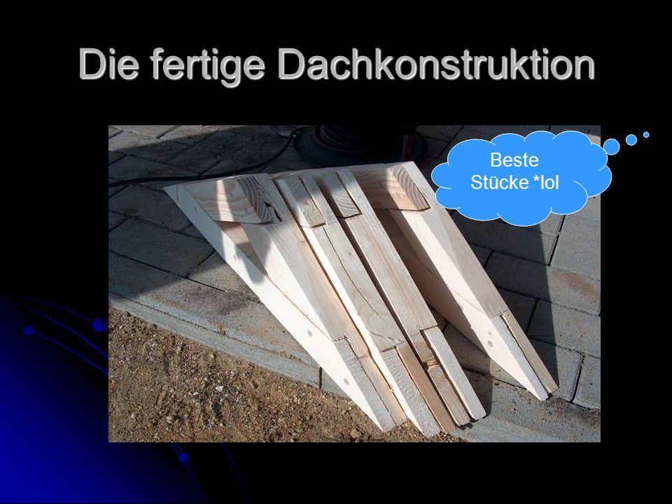Die fertige Dachkonstruktion Beste Stücke *lol
