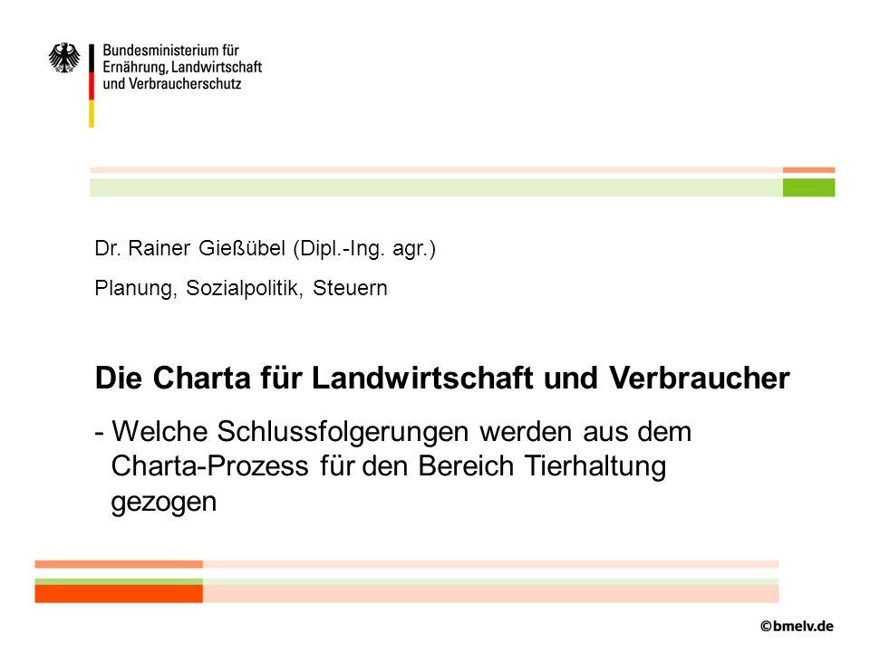 Dr.Rainer Gießübel (Dipl.-Ing.