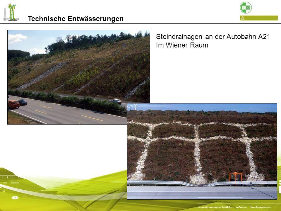 Biologische Entwässerungen durch Drainfaschinen