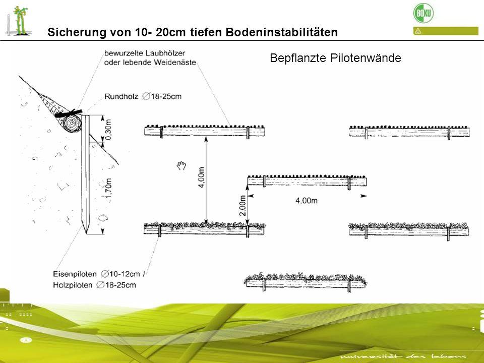 Bepflanzte Pilotenwände Sicherung von 10- 20cm tiefen Bodeninstabilitäten