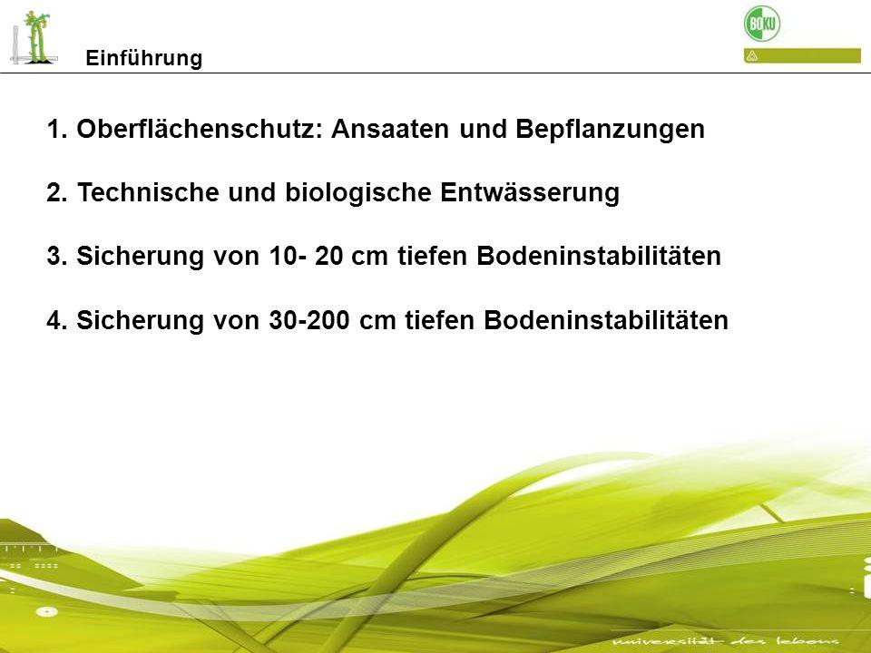 1. Oberflächenschutz: Ansaaten und Bepflanzungen 2. Technische und biologische Entwässerung 3. Sicherung von 10- 20 cm tiefen Bodeninstabilitäten 4. S