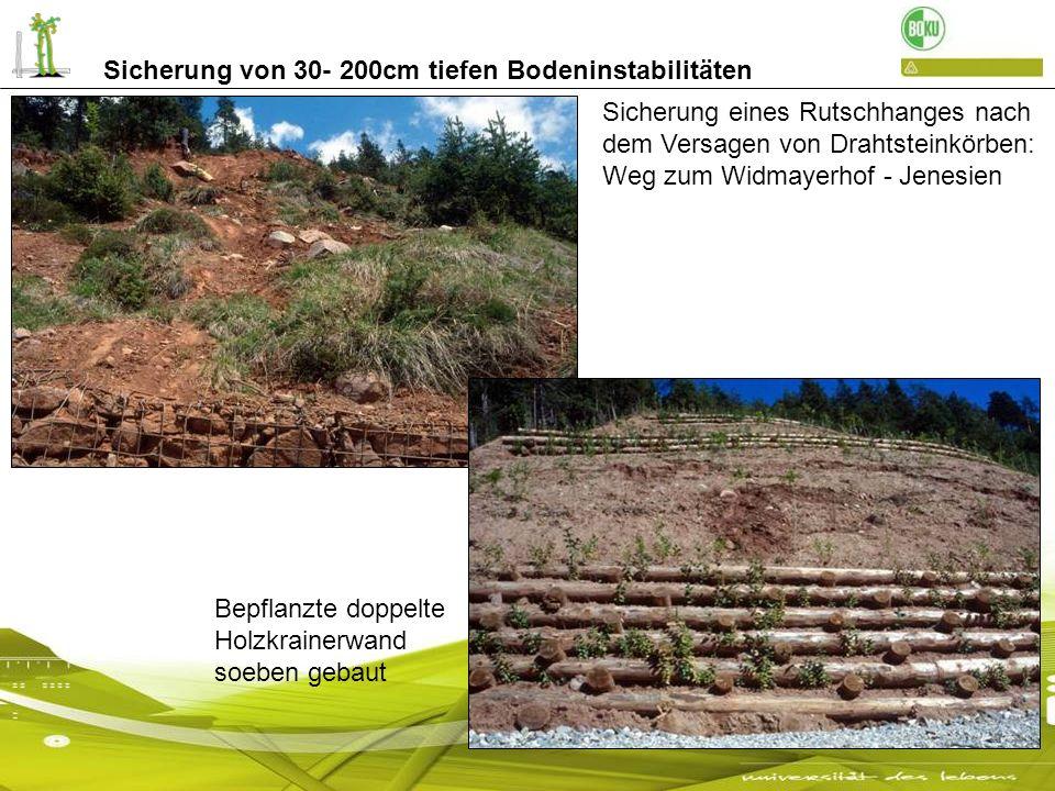 Sicherung von 30- 200cm tiefen Bodeninstabilitäten Sicherung eines Rutschhanges nach dem Versagen von Drahtsteinkörben: Weg zum Widmayerhof - Jenesien