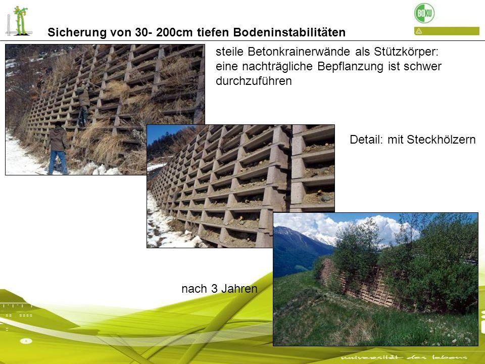 Sicherung von 30- 200cm tiefen Bodeninstabilitäten steile Betonkrainerwände als Stützkörper: eine nachträgliche Bepflanzung ist schwer durchzuführen D