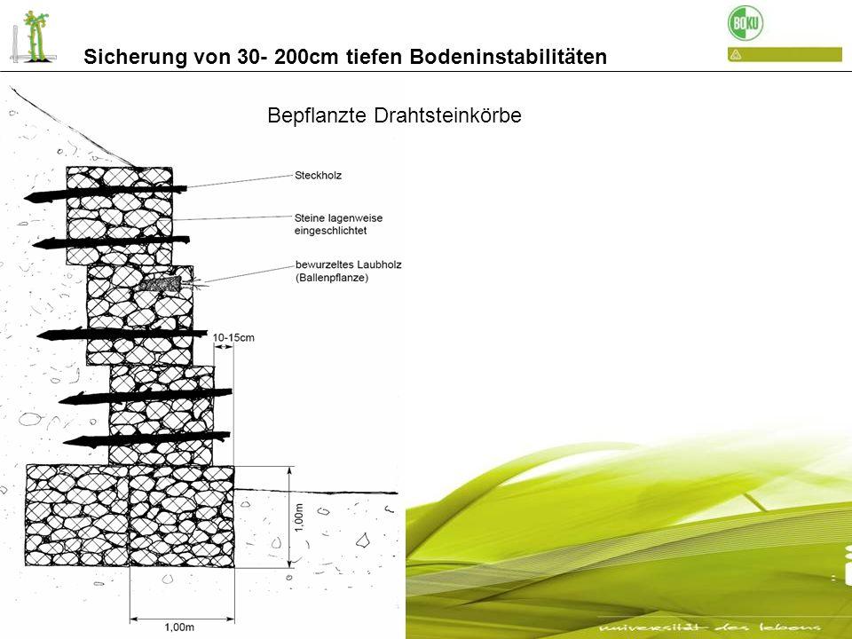 Sicherung von 30- 200cm tiefen Bodeninstabilitäten Bau von bepflanzten Drahtsteinkörben Abbruch Katharinaberg / Schnals Einlegen der Weidensteckhölzer durch das verzinkte Gitter bis zum gewachsenen Boden