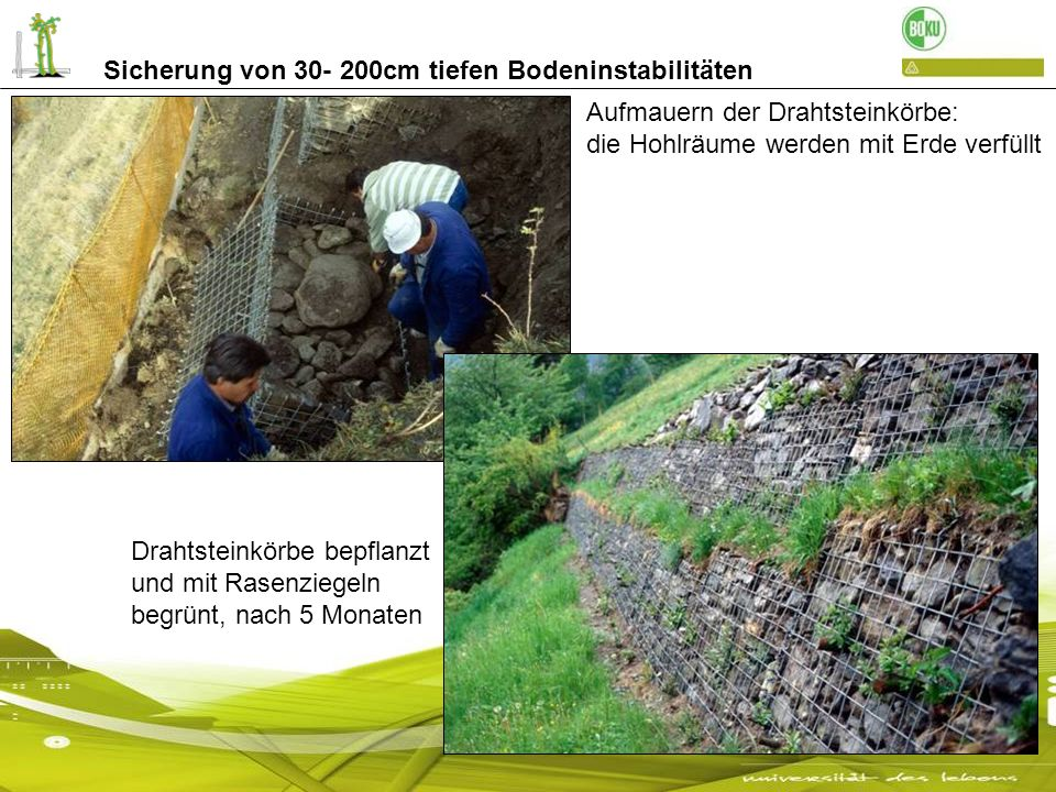 Sicherung von 30- 200cm tiefen Bodeninstabilitäten Aufmauern der Drahtsteinkörbe: die Hohlräume werden mit Erde verfüllt Drahtsteinkörbe bepflanzt und