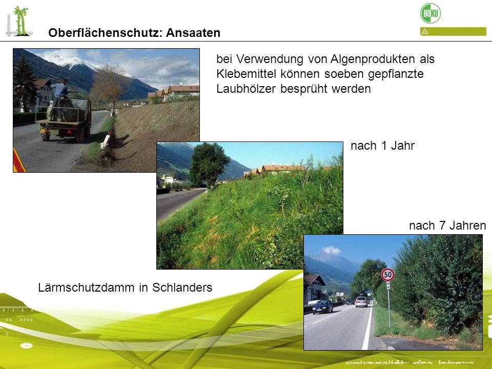 Felsböschungen oder Steinbrüche sind nur mit der Hydrosaat zu begrünen Straße von Mühlbach nach Meransen Oberflächenschutz: Ansaaten