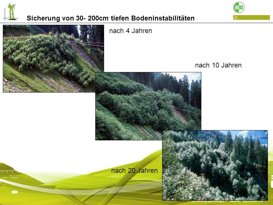 Sicherung von 30- 200cm tiefen Bodeninstabilitäten nach 4 Jahren nach 10 Jahren nach 20 Jahren