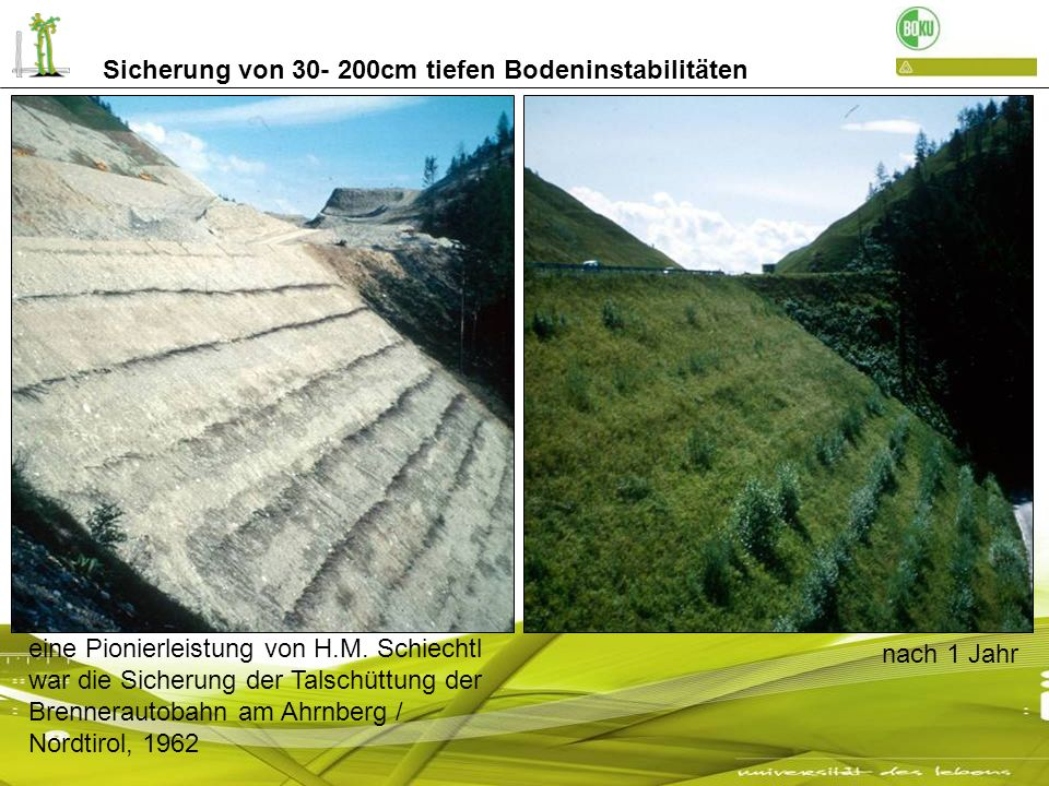 Sicherung von 30- 200cm tiefen Bodeninstabilitäten eine Pionierleistung von H.M. Schiechtl war die Sicherung der Talschüttung der Brennerautobahn am A