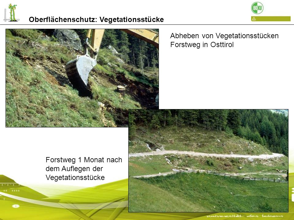 Abheben von Vegetationsstücken Forstweg in Osttirol Forstweg 1 Monat nach dem Auflegen der Vegetationsstücke Oberflächenschutz: Vegetationsstücke