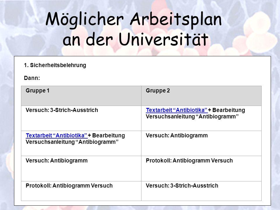 Möglicher Arbeitsplan an der Universität 1. Sicherheitsbelehrung Dann: Gruppe 1Gruppe 2 Versuch: 3-Strich-AusstrichTextarbeit Antibiotika Textarbeit A